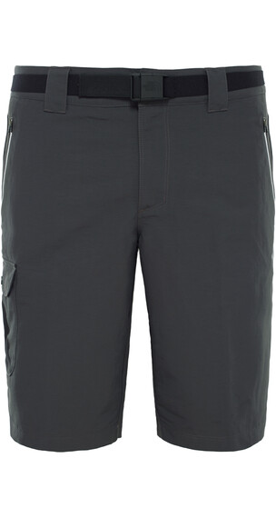 The North Face M's Northerly Short Asphalt Grey